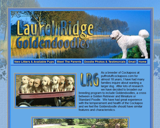 Laurel Ridge Goldendoodles